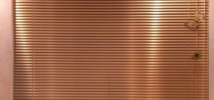 Алюминиевые горизонтальные жалюзи — Метро Улица 1905 года