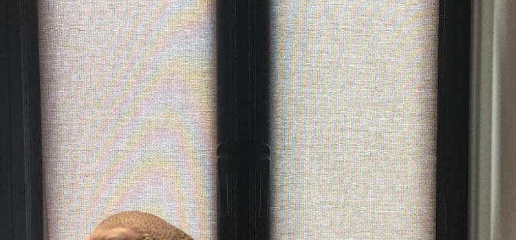 Рулонные шторы мини (Mini)