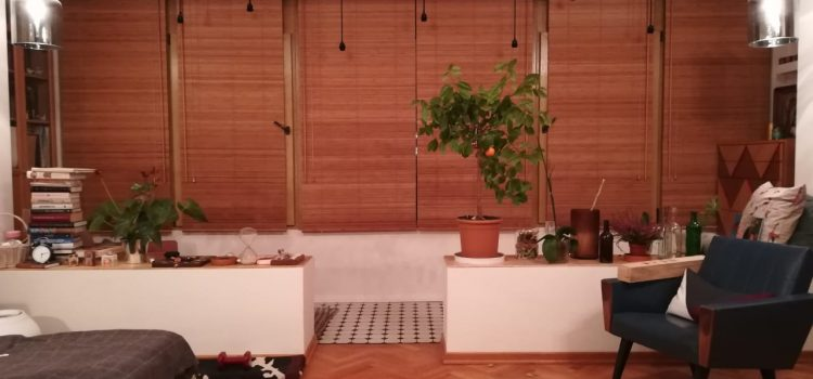 Горизонтальные жалюзи из бамбука 25 мм — Москва, 2-й Сетуньский проезд, Метро Кутузовская